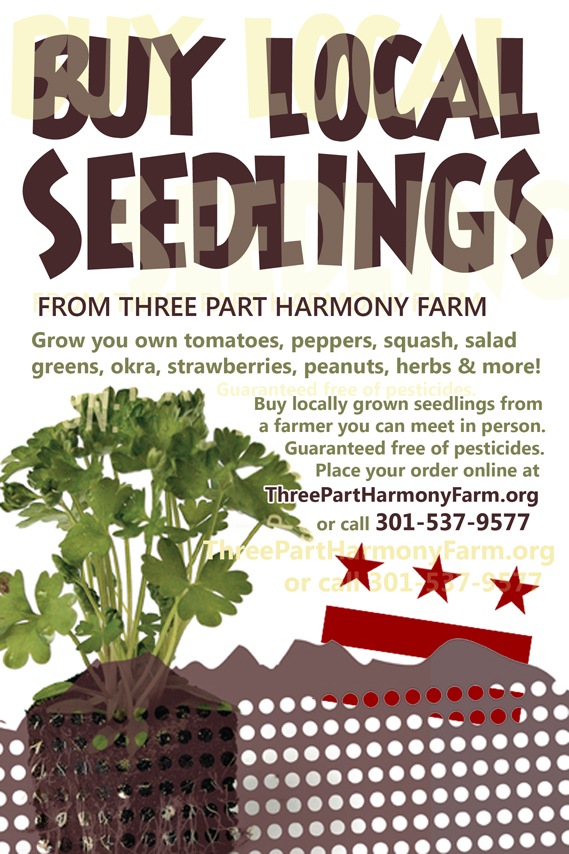 Buy Local Seedlings from Three Part Harmony Farm