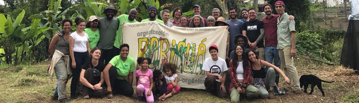 Permalink to: Puerto Rico Farmer-to-Farmer Solidarity